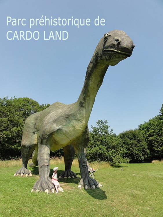 Cardoland